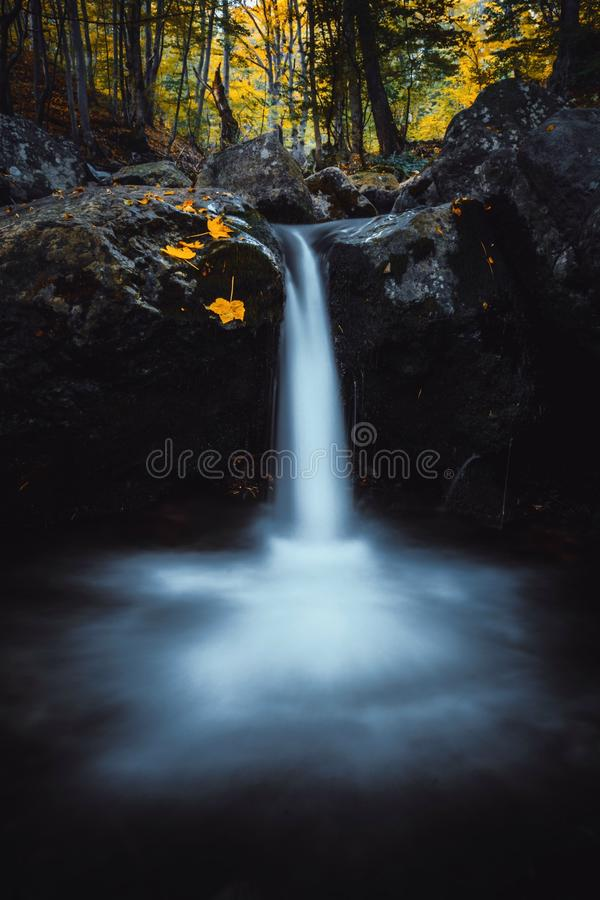 Autumn fallen yellow and red leaves in waterfall on Vitosha Mountain stock photo