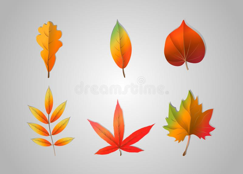 Autumn falling leaves isolated on gray background. Vector illustration vector illustration