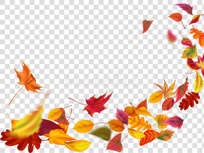 Autumn falling leaves. Leaf fall, wind rises autumnal foliage and yellow leaves isolated vector illustration. Autumn falling leaves. Leaf fall, wind rises stock illustration