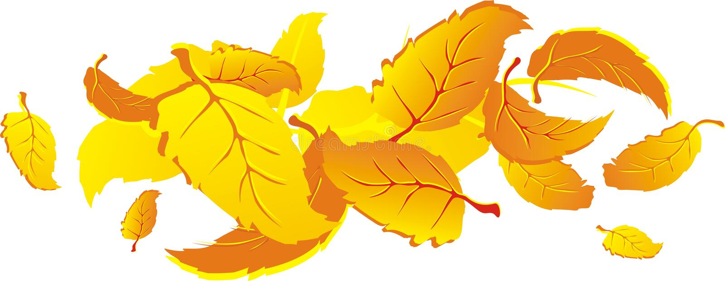 Autumn falling leaves. Orange autumn falling leaves. Vector illustration vector illustration