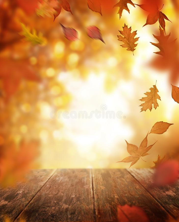 Autumn Falling Leaves and Wooden Table royalty free stock image