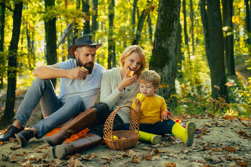 Autumn Family Camping in the Park and eating apple. Active people and happy family concept. Outdoors. Autumn camping royalty free stock photos