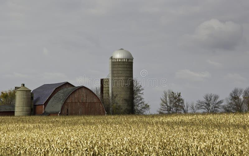 Autumn Farm. Autumn country scene. Farm field with barns and silos royalty free stock photos