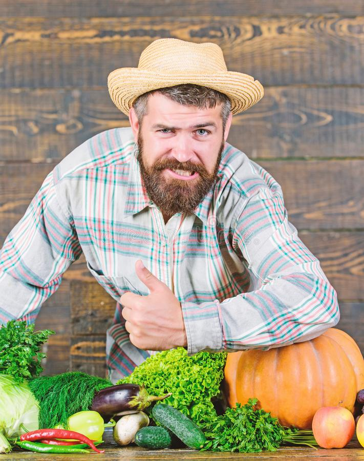 Autumn on the farm. man chef with rich autumn crop. organic and natural food. happy halloween. bearded mature farmer. Seasonal vitamin food. Useful fruit and royalty free stock image