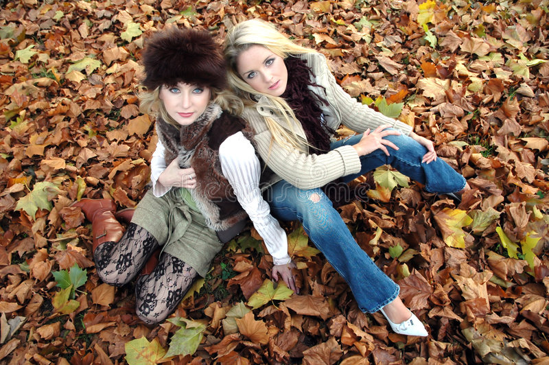 Download Autumn Fashion stock image. Image of blond, fall, friends - 349983