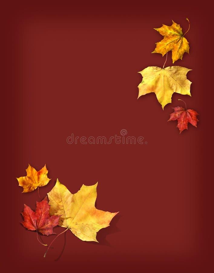 Autumn Feelings Background Free Stock Photo