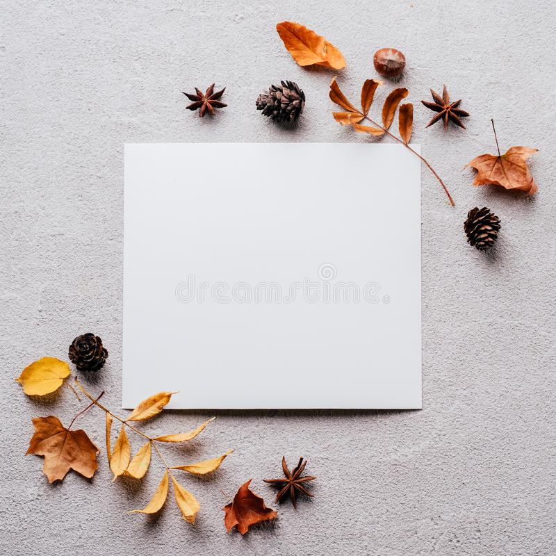 Autumn festive decorations, greeting card mockup. Autumn, thanksgiving day, DIY, holidays preparation and creativity layout. Festive decorations, dried leaves stock images