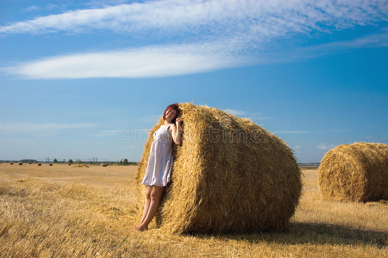 Download Autumn in the field stock image. Image of farm, nature - 26825861