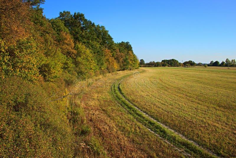 Autumn Field Path lizenzfreie stockfotografie