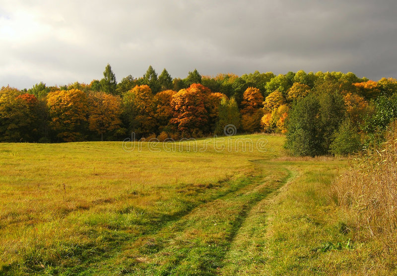 Autumn fields stock images