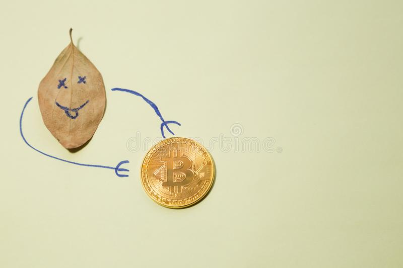 Autumn financial concept: fallen leaf with the smiley and golden bitcoin royalty free stock image