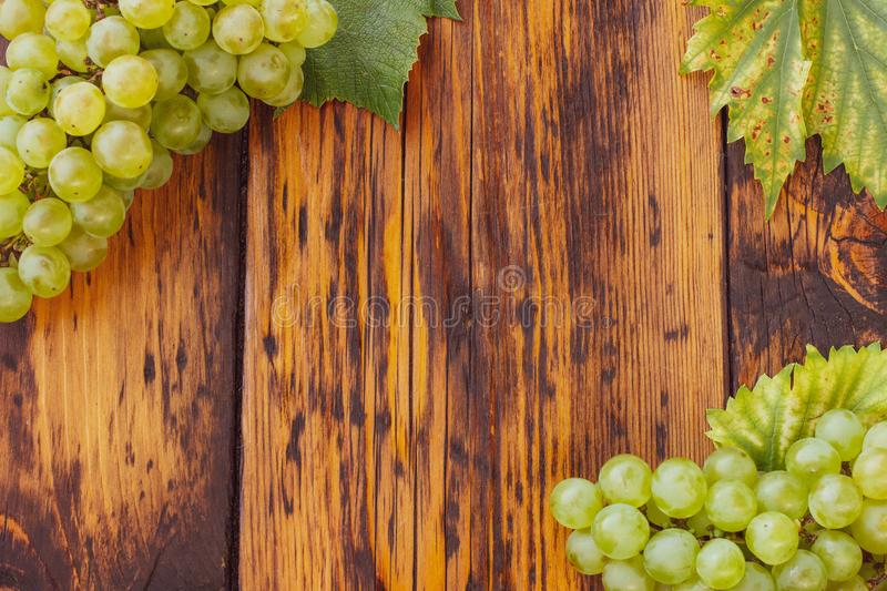 Green grapes on a wooden table. Autumn flat lay with grapes on a wooden table royalty free stock images