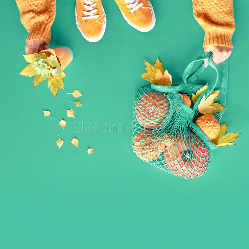 Autumn flat lay on vibrant biscay green background. Orange pumpkins in net bag, yellow maple leaves, female hands in orange. Autumn flat lay on vibrant biscay royalty free stock photos