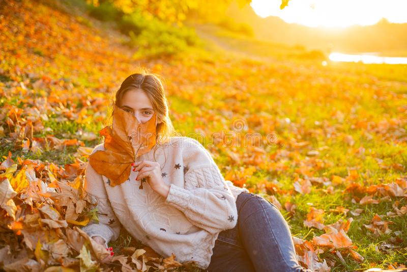 Autumn flirty blonde girl dreamy posing in November day. Outdoor photo of a pleased long-haired woman sitting on the royalty free stock photography