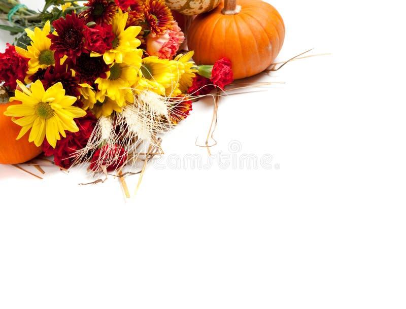 Autumn Floral Arrangement On White Stock Photography