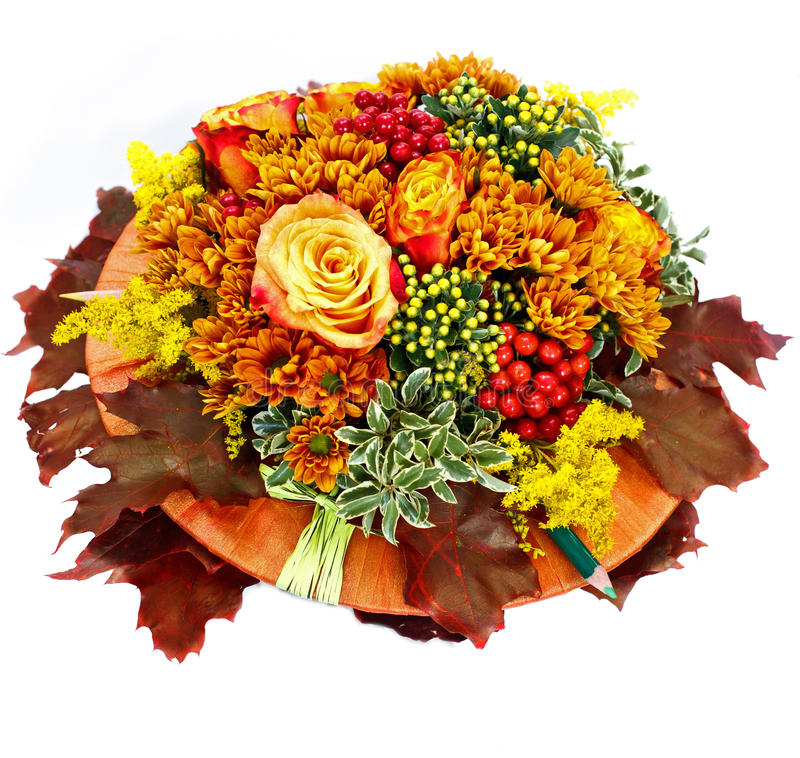 Free Autumn Flower Composition On White Background Stock Image - 20965811