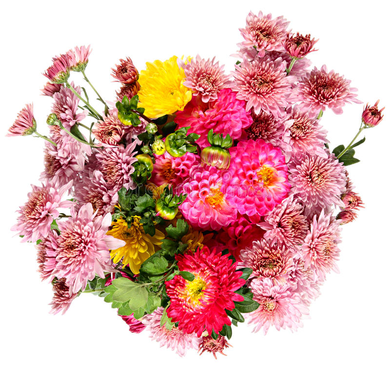 Download Autumn Flowers Royalty Free Stock Photo - Image: 26837545