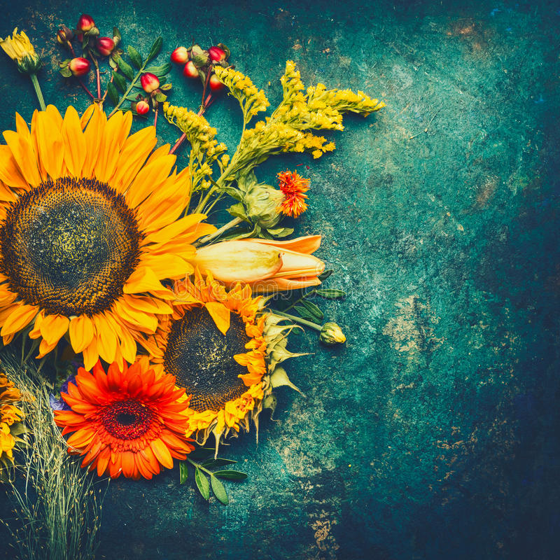 Autumn flowers arrangements made of sunflowers, leaves and canina berries on rustic vintage background , top view, place for text stock photo