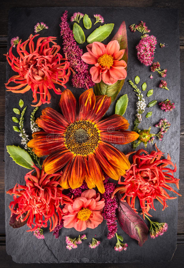Autumn flowers composition with sunflower, dahlias and herbs on dark table royalty free stock photography