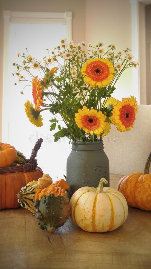 autumn flowers royalty free stock photography