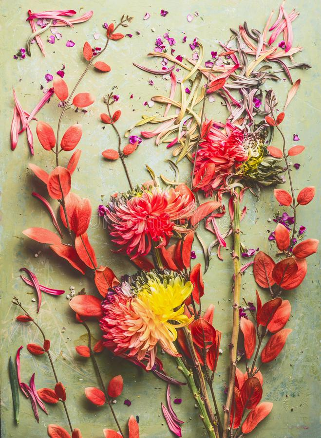 Autumn flowers and leaves flat lay composing, top view. Fall floral still life with chrysanthemums royalty free stock photos