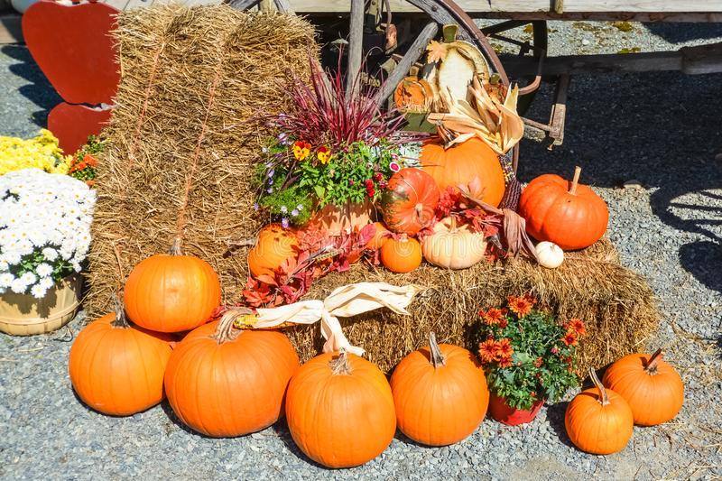 Autumn flowers and pumpkins decoration on straw-bale beside wagon wheel on the ground stock photo