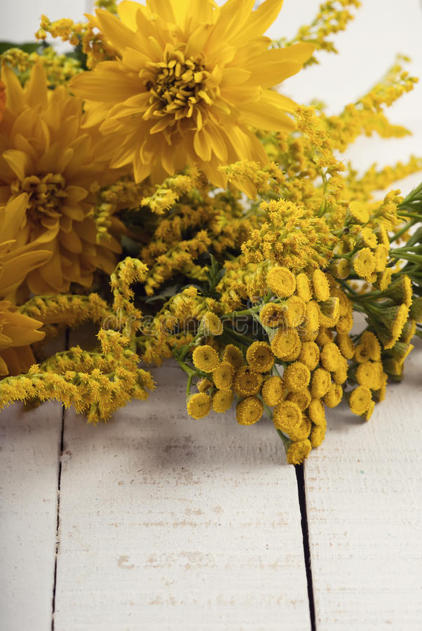 Autumn flowers on table royalty free stock photography