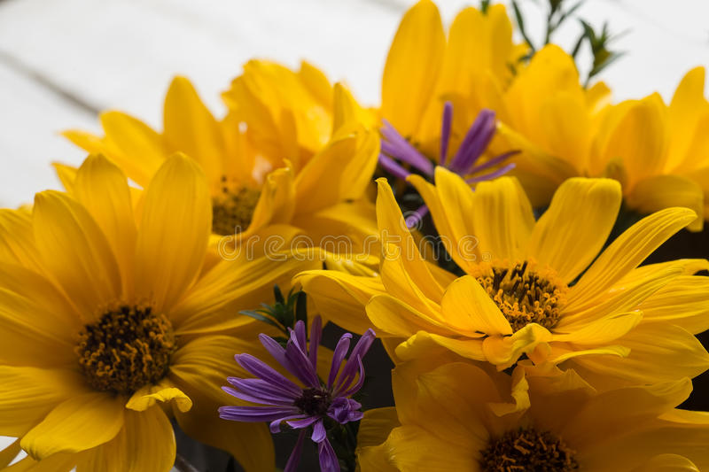 Autumn flowers on table stock photography