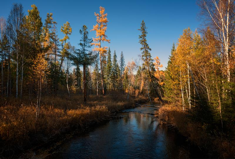 Autumn Fluss Olha stockfoto