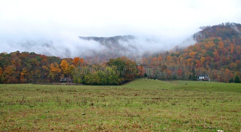 Autumn Fog sur les montagnes photo libre de droits
