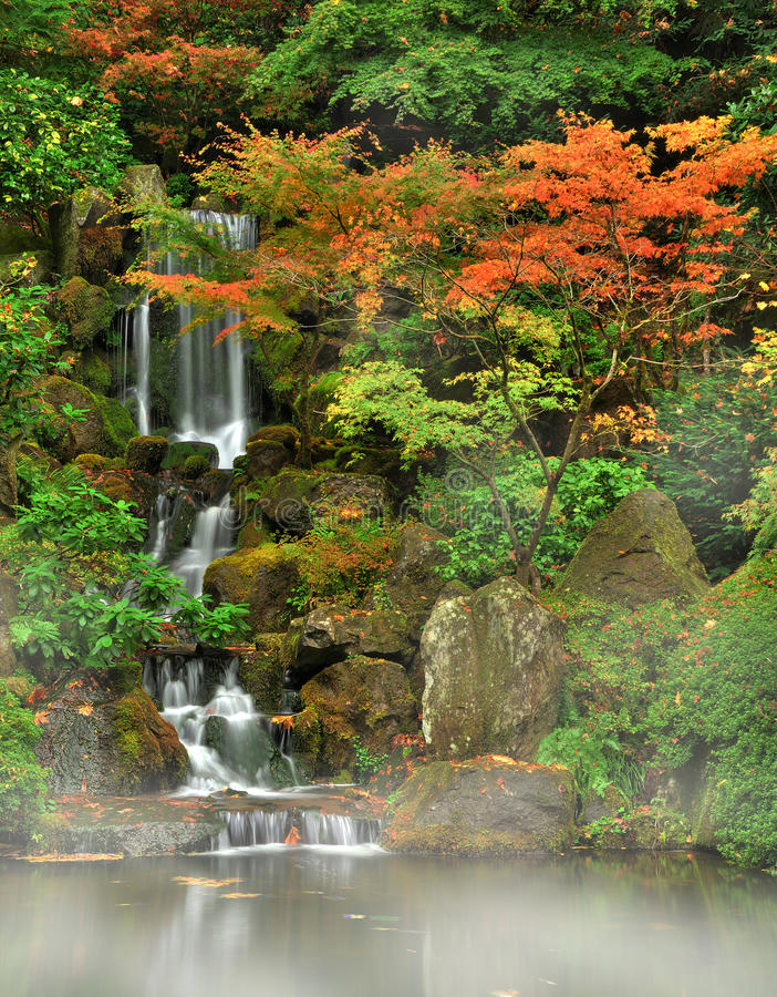 Autumn fog and waterfall royalty free stock photo