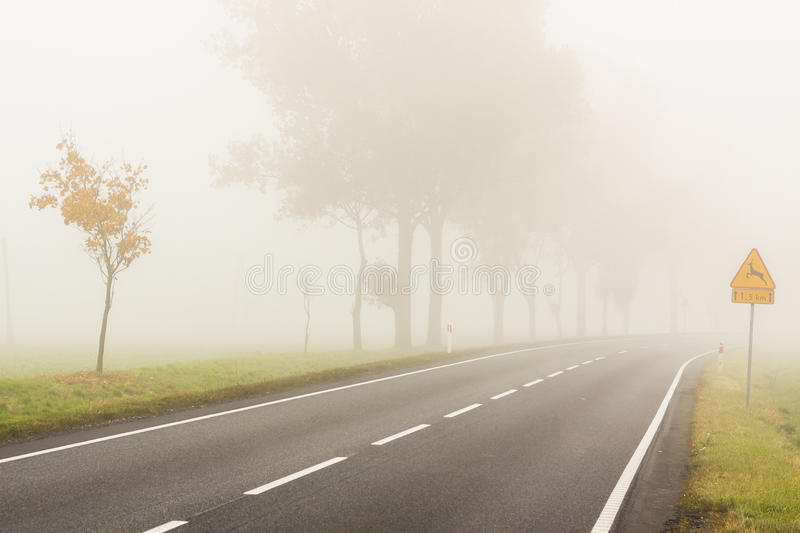 autumn foggy day poland stock image image of leafs 36204329 rh dreamstime com free clipart foggy weather Foggy Day Clip Art