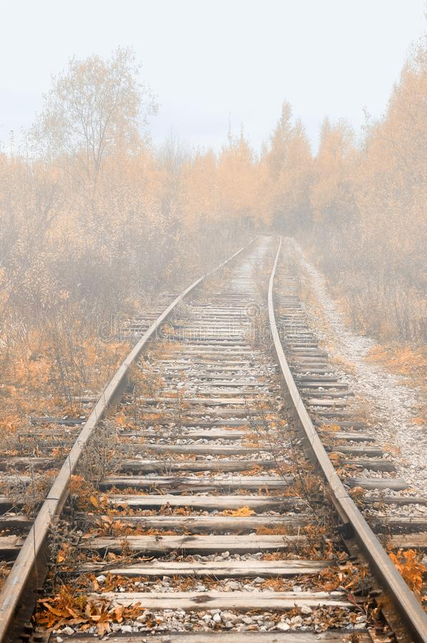 Autumn foggy landscape, abandoned railroad lost in the autumn forest stock photography