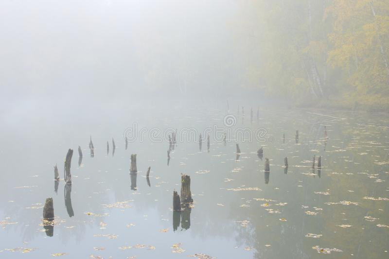 Fog with water surface royalty free stock photos