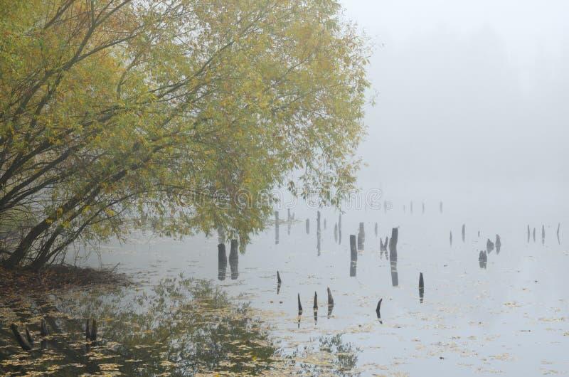 Mysterious Lake stock photos