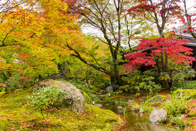 Autumn foilage in Tenryu-Ji, Arashiyama. Japan royalty free stock image