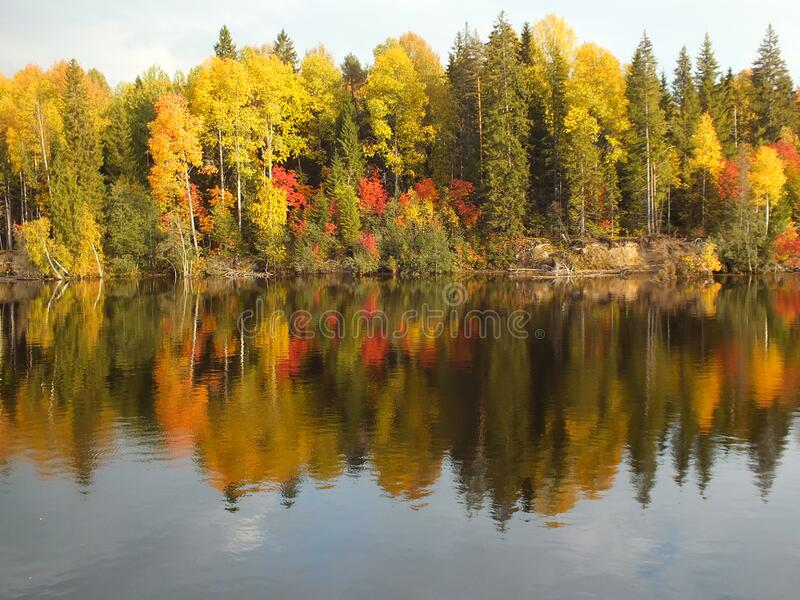 Autumn Foliage Along Waterfront Free Public Domain Cc0 Image