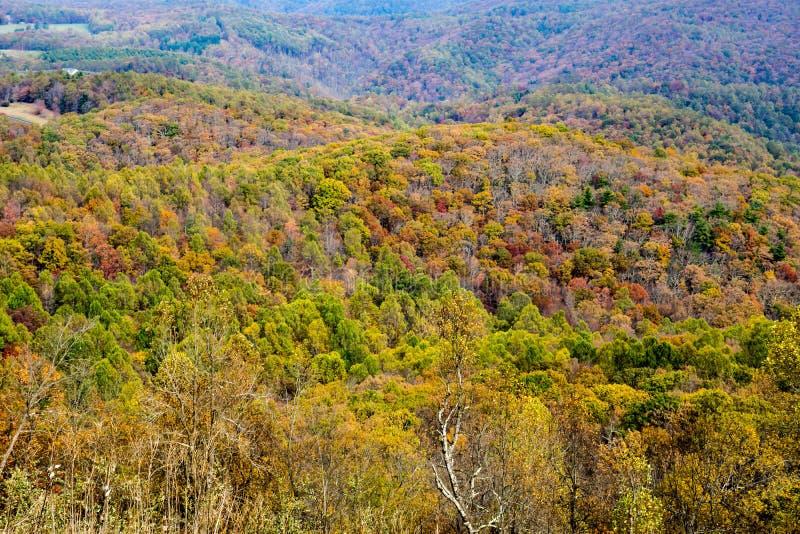 Autumn Foliage in the Blue Ridge Mountains - 2 stock image