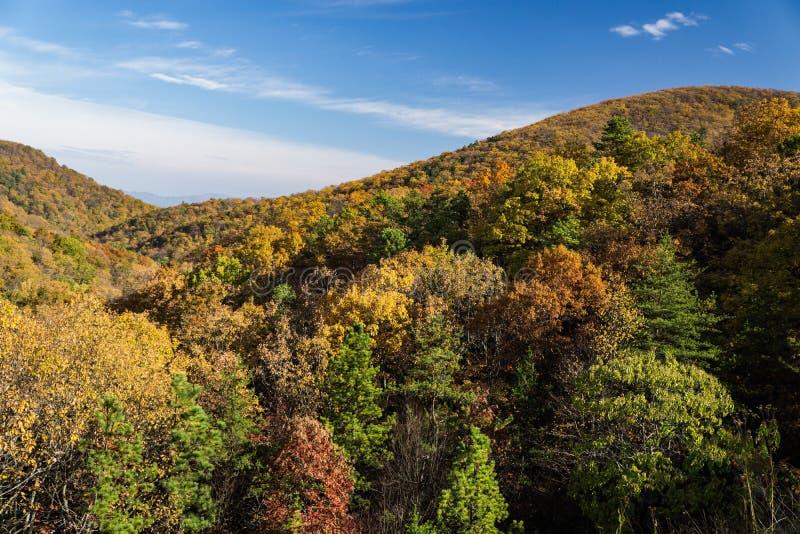 Autumn foliage on the Blue Ridge Mountians stock photo