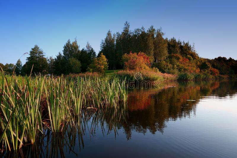 Autumn foliage casts reflection on the calm waters stock image
