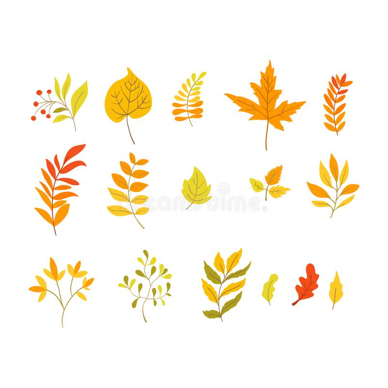 Autumn foliage elements in handdrawn style - aspen, oak, maple leaves. Vector autumn foliage elements in handdrawn style - aspen, oak, maple leaves and plants vector illustration
