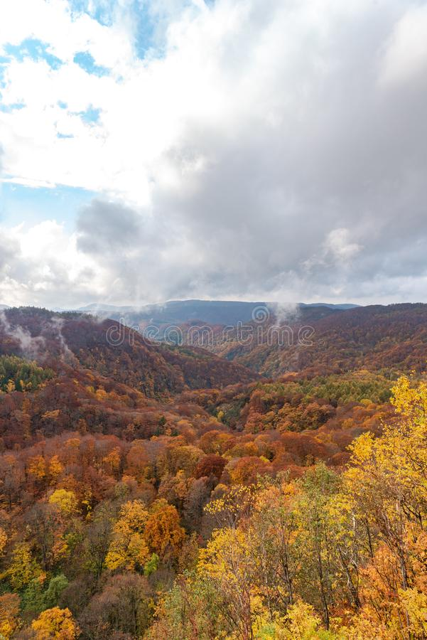 Autumn foliage scenery view, beautiful landscapes. royalty free stock image