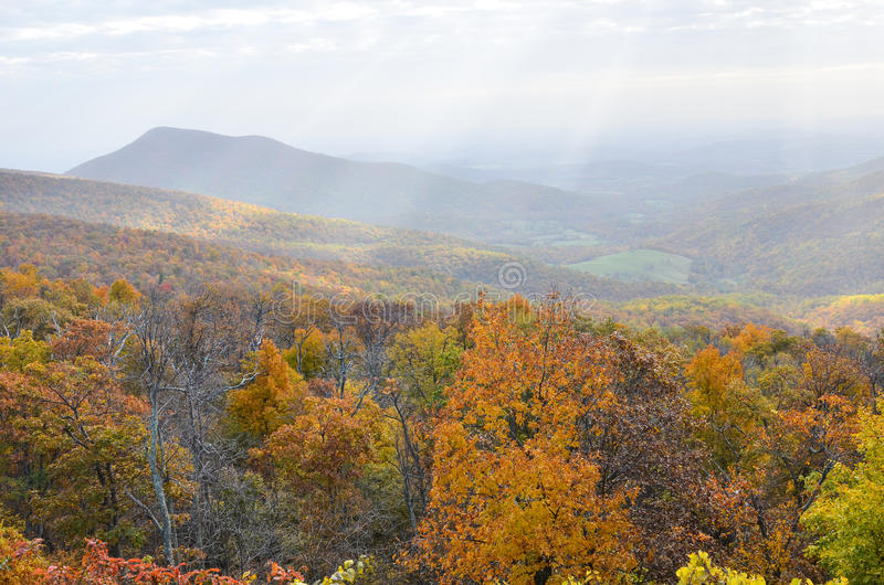 Autumn foliage in Shenandoah National Park - Virginia United States. Autumn foliage with misty sky in Shenandoah National Park - Virginia United States royalty free stock photos