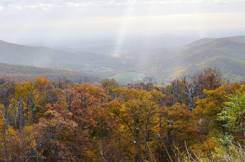 Autumn foliage in Shenandoah National Park - Virginia United States. Autumn foliage with misty sky in Shenandoah National Park - Virginia United States stock images