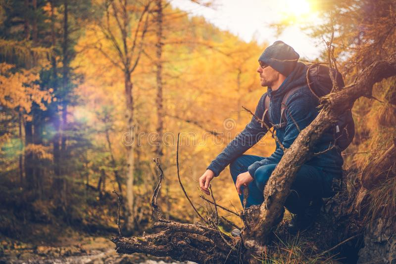 Autumn Foliage Trail Hike royalty-vrije stock afbeelding