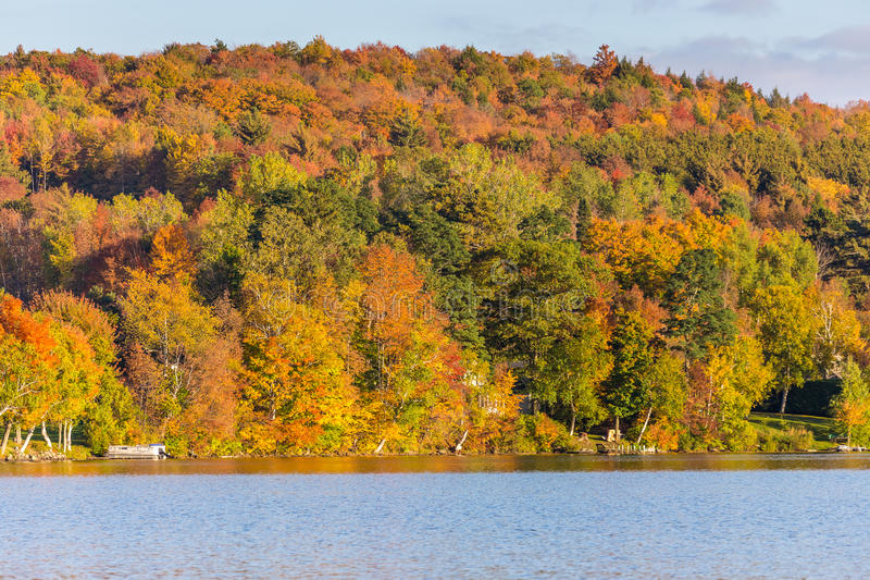 Autumn foliage in Vermont, Elmore state park stock photography