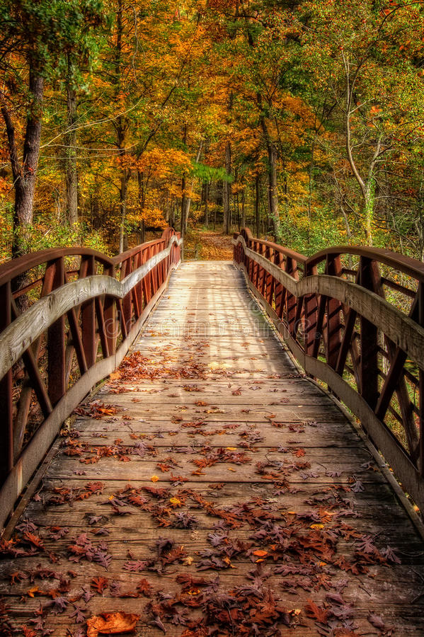Autumn Foot Bridge. A look down a rustic foot bridge at Oak Openings Preserve Metropark in Toledo Ohio that`s covered with autumn leaves royalty free stock photos