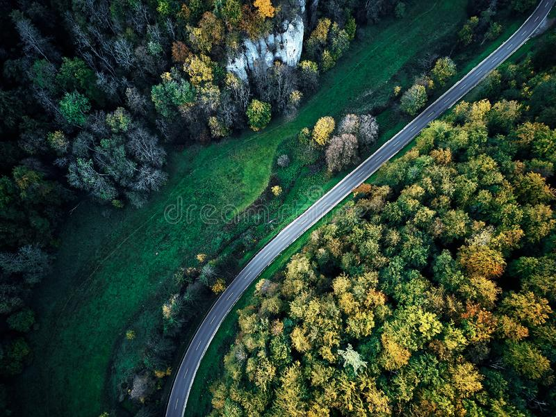 Street between autumn trees in the forest aerial drone view from above, dji mavic stock images
