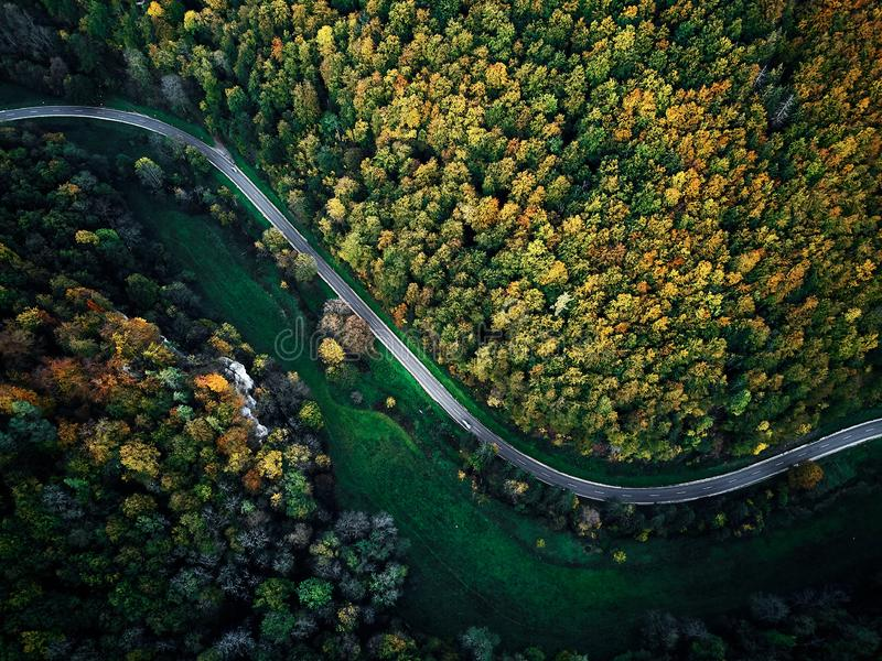 Street between autumn trees in the forest aerial drone view from above, dji mavic royalty free stock image