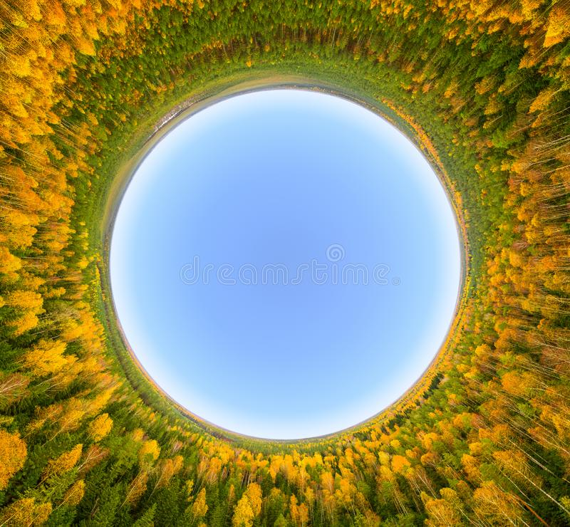 Autumn in a forest. Blue sky surrounded by yellow autumn forest trees in `little planet` projection stock images